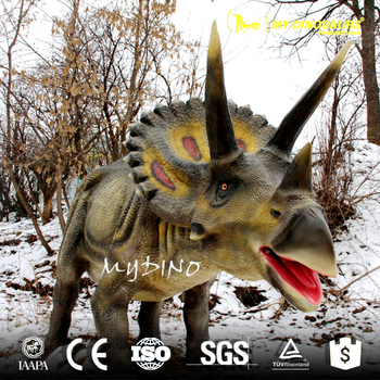 My Dino-Lifesize dinosaur for animatronic triceratops