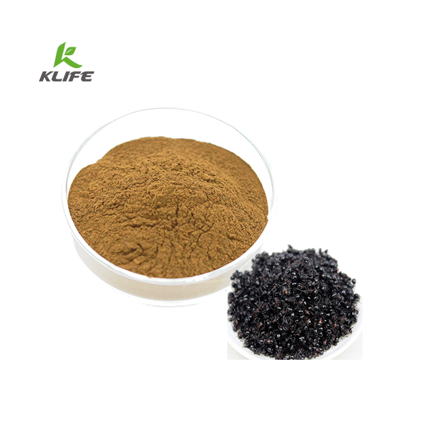 Chinese Natural Black Ant Extract Powder with Ratio 10:1with Free Sample