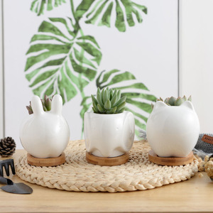 Wholesale Indoor White Ceramic Small Mini Animal Stone Succulent Cactus Flower Plant Pot for