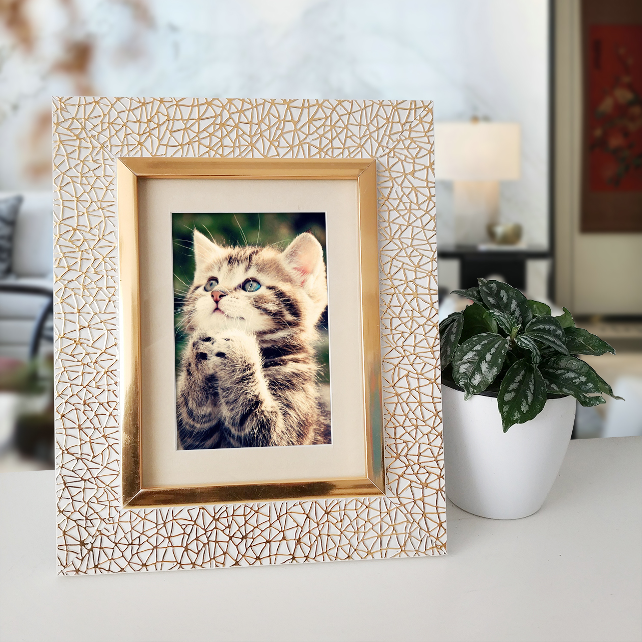 Plastic Ornate Frame, Plastic Ornate Frame Suppliers and ...