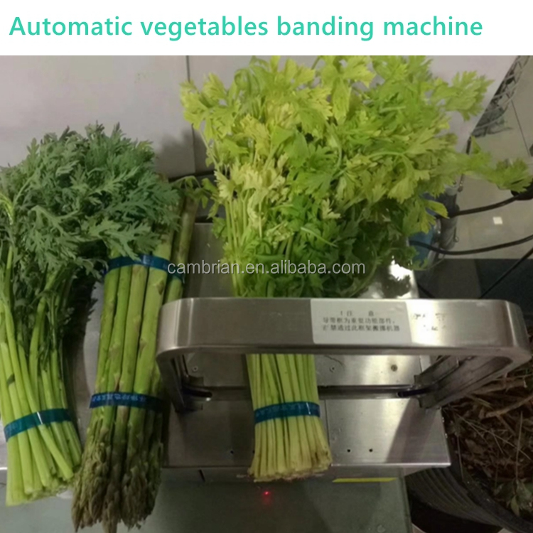 Small vegetable banding machine electric strapping tools