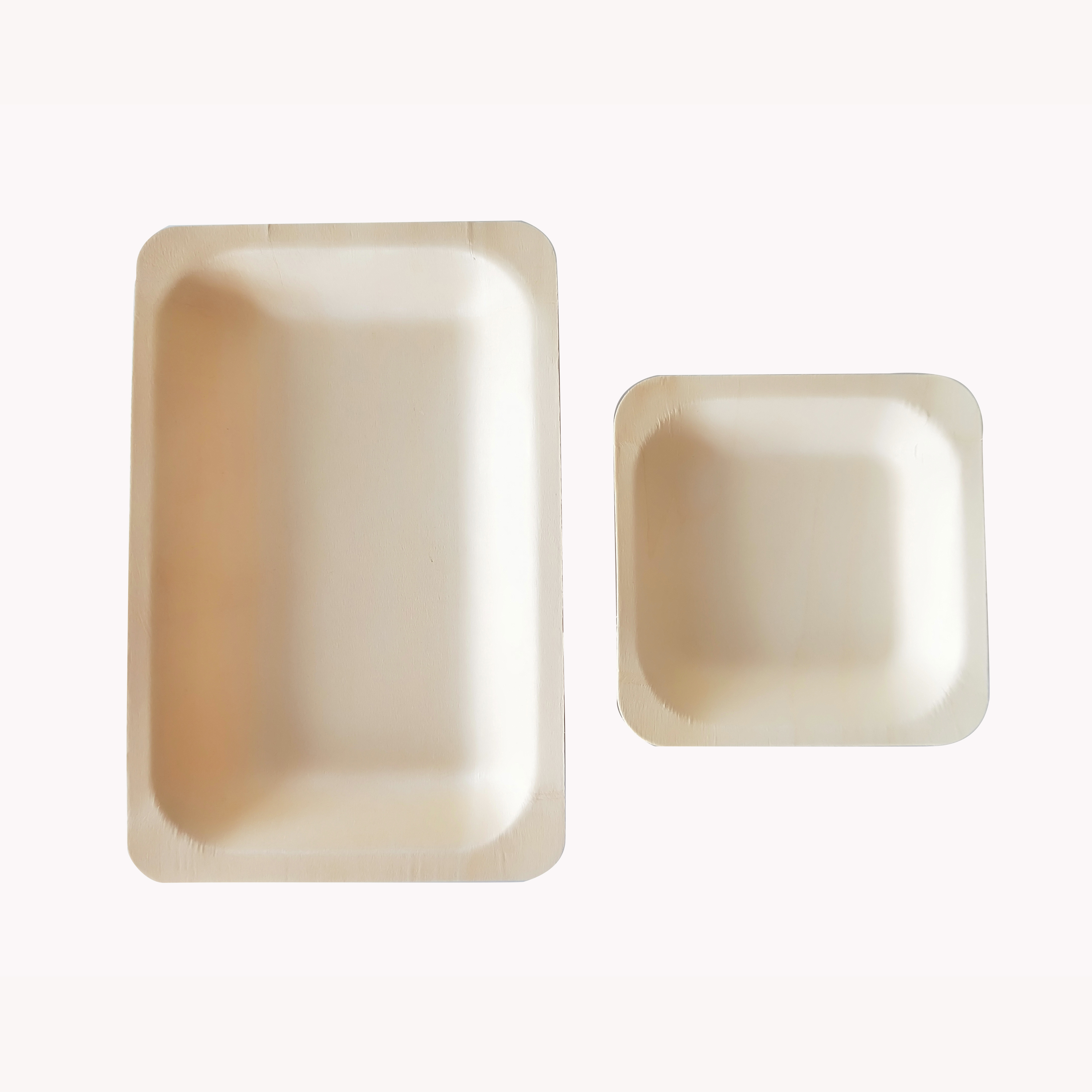 New Biodegradable Snacks Sugar Steak plate wooden Disposable Fast Food Plates