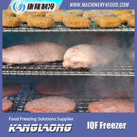 3000Kg/H Individual Quick Freezing Equipment With Great PrIce
