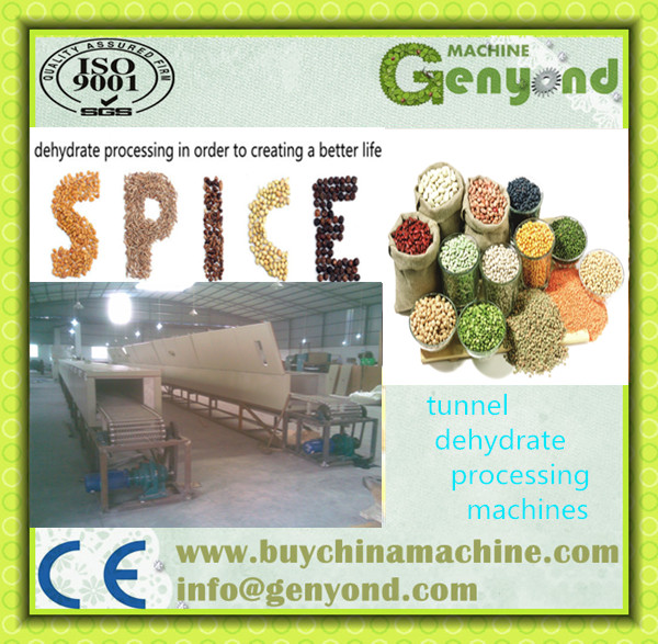 SSJ Tunnel Type Vegetable fruit dehydrator