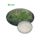 100% Natural Tall Oil Palm Fatty Acid 25% Saw Palmetto Extract Powder Saw Palmetto