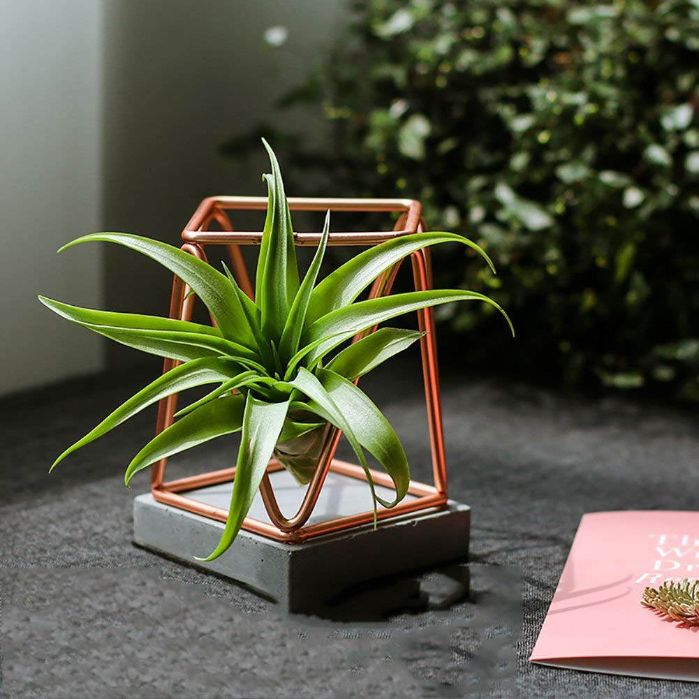 XiYunHan Geometry Flower Pot, Air Pineapple Rose Gold Cement Iron Art Flower Pot Base Creativity Indoor Living Room Potted Plants Green Home Decorations Ornaments Container Floor-standing Bracket