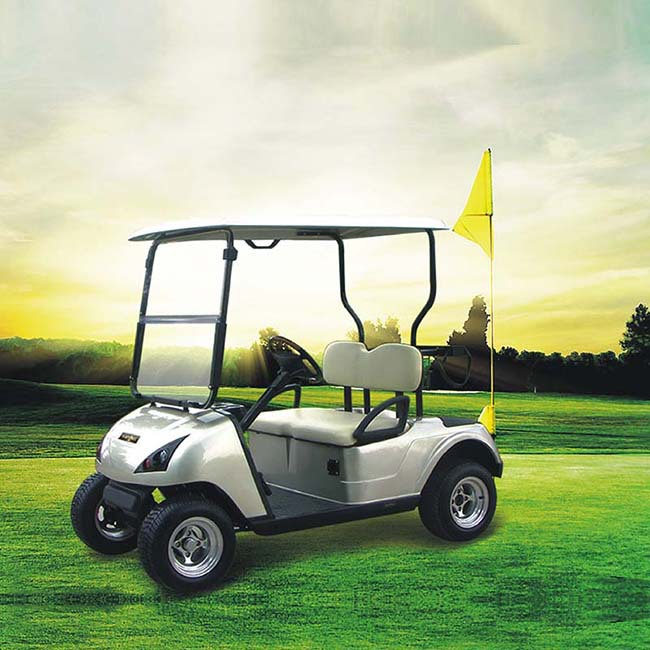 Marshell factory prices golfcart electric with CE certificate DG-C2