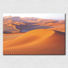Canvas printed modern artwork care for the environment , modern picture from photo of Desert for home decor free shipping