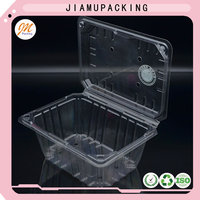 top quality plastic clamshell blister fruit storage packing or packaging box
