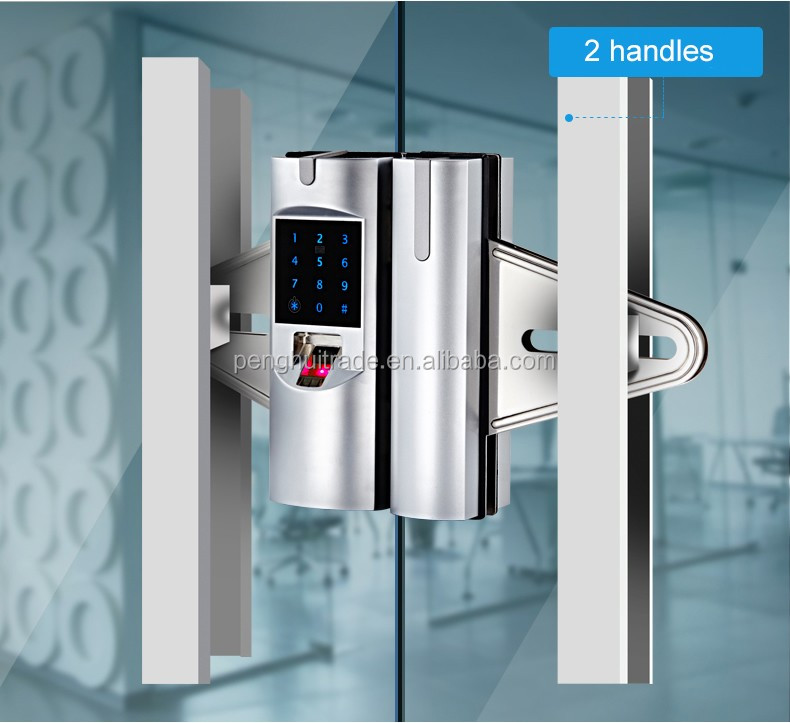 Zinc Alloy Frameless Glass Door Fingerprint Electric