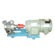 Stainless Steel fuel oil transfer rotary gear pump