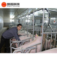 factory high quality pig / hog hot dip galvanized gestation stall used in livestock farming