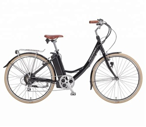 "28""Electric Bike with Brushless Motor /Adult City electric Bike (SY-E2822)"