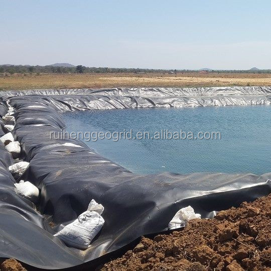 China Trade Assurance Supplier 0.75mm HDPE Smooth Geomembrane