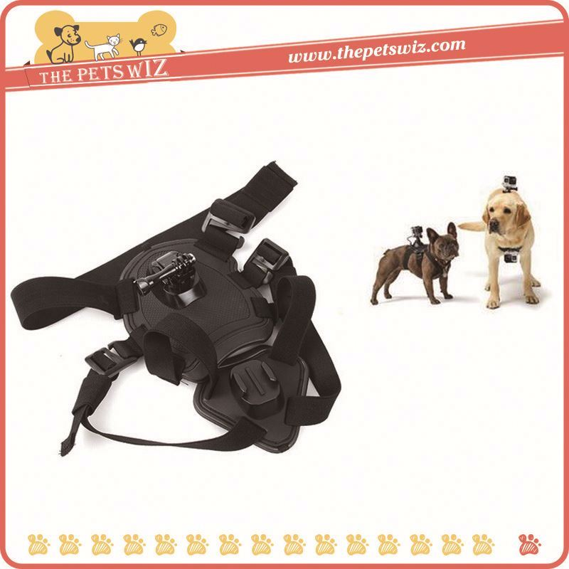 New products in 2016 hound dog fetch harness chest strap ,p0wc5 sport camera dog chest strap for sale