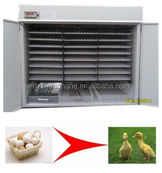 Dezhou egg incubator ZH-4576 chicken hatchery machine for sale