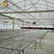 Hot Dip Galvanized Steel Greenhouse Rolling Bench For Nursery, Vegetable And Tomato Growing