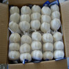 2014 hot sale best quality garlic