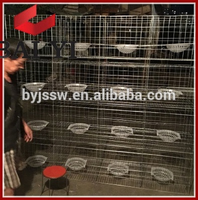 Trade Assurance Pigeon Breeding Pens