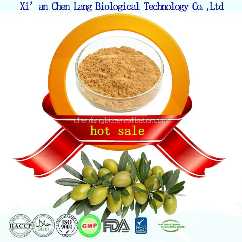 Pure Natural Chinese Herbal Medicine Olive Leaf Extract Oleuropein 25%