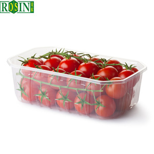 clear disposable pp plastic fruit tray blister box for fruit