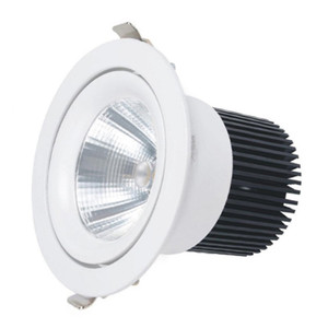 Dimmable Cob 8 Inch LED Recessed Downlight 40W 50W 60W 70W 80W IP44 Down light Led