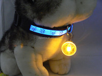 good price of 8 colors led safety pets dog tag wholesale online