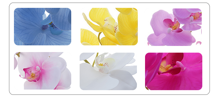 Latex Coated Phalaenopsis Real Touch Artificial Orchids For Home Decoration