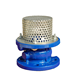 DIN cast iron foot valve with stainless steel filter