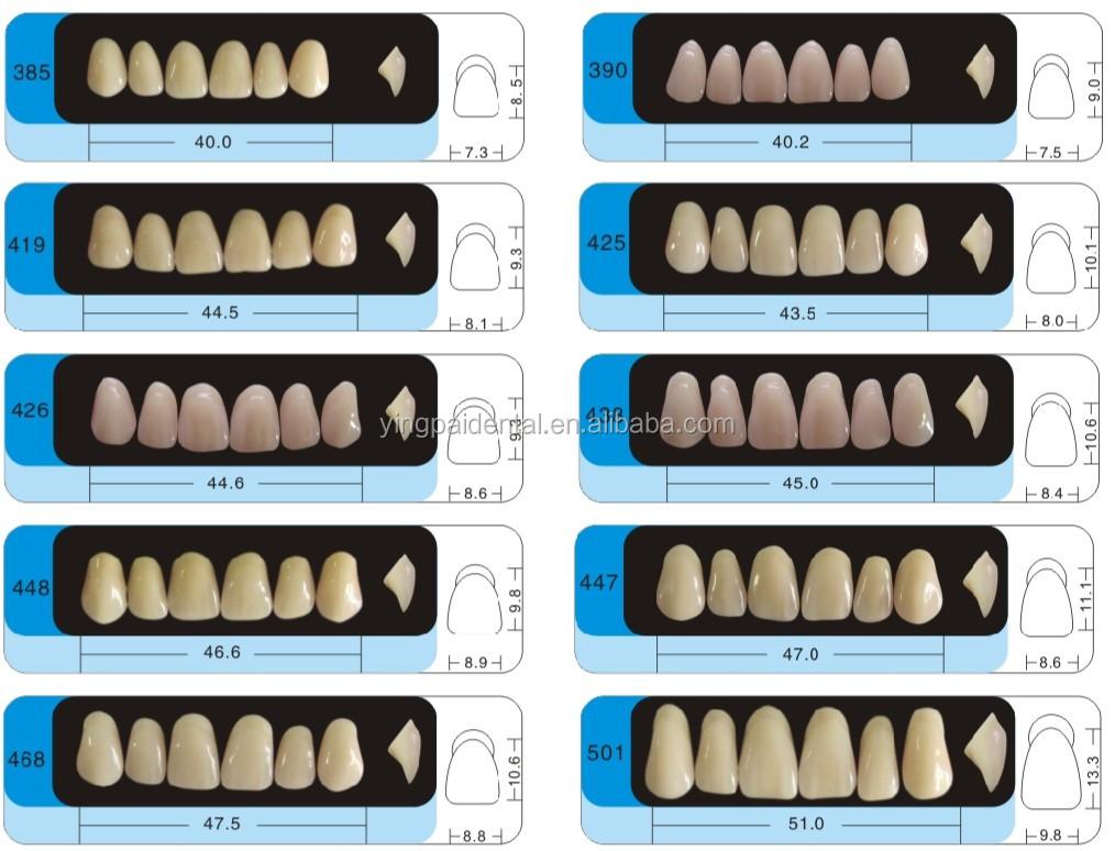 Denture Teeth Size Chart Heartpulsar