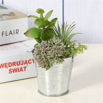 New Product Diffe Types Mini Tinplate Pot Potted Plants For Living Room