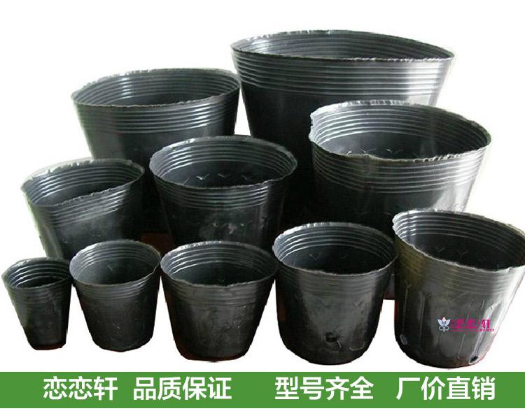 P 233 Pini 232 Re Contenants Pour Plantes Promotion Achetez Des
