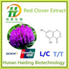 GMP Factory Supply Organic Red Clover Extract By HPLC
