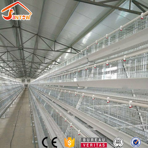 Chicken Use Welded Wire Chicken Layer Cages Automatic Battery Cages For Chickens