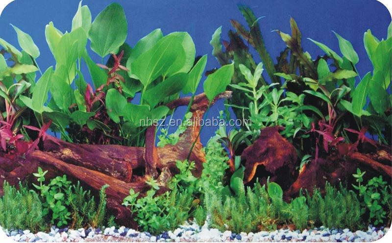 decorative coral photo paper aquarium background stickers for fish tank decoration