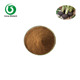 100% Natural Black radish Extract Powder