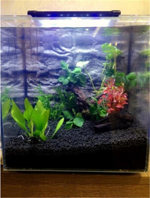 Hot Selling Aquarium Rich Plant Growth Soil With High Organic ...