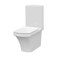 Wall Hung Water Closet Popular Ceramic Toilet for Sanitary Ware Toilet