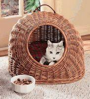 Summer willow pet basket dog bed
