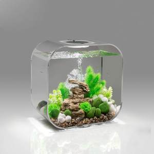 Customized clear transparent gift box with nano fish tank aquarium