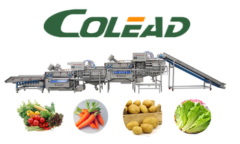 salad washer/vegetable and fruit washing machine for fresh cut vegetable and frozen vegetables