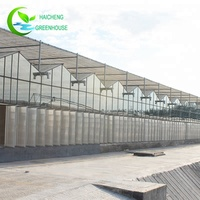 Professional agriculture exhaust fan greenhouse green house glass