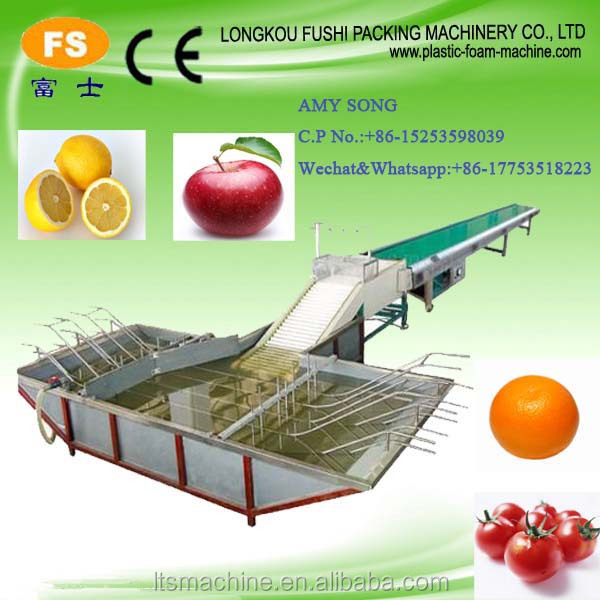 Onion Vegetable Fruit Preservation Line Cleaning Machine