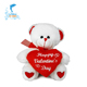 Valentines Gift Multi Size plush stuffed teddy bear with heart