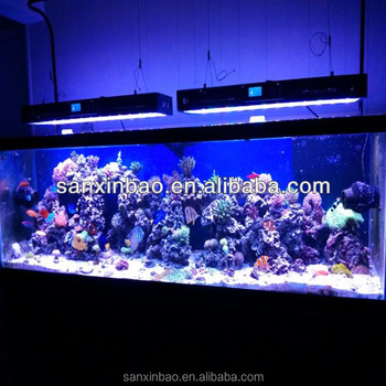 Evergrow It2080 99x3w Led Aquarium Lights For Reef Tanks View Tank Lighting Product Details From Shenzhen Sanxinbao Semiconductor