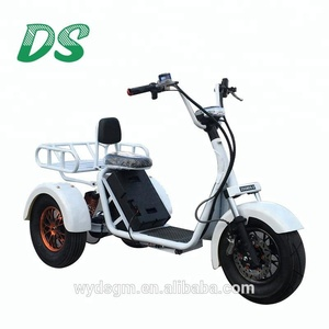 2018 hot sale cargo electric tricycle from china