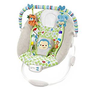 Buy Bright Starts Comfort Harmony Cradling Bouncer Merry