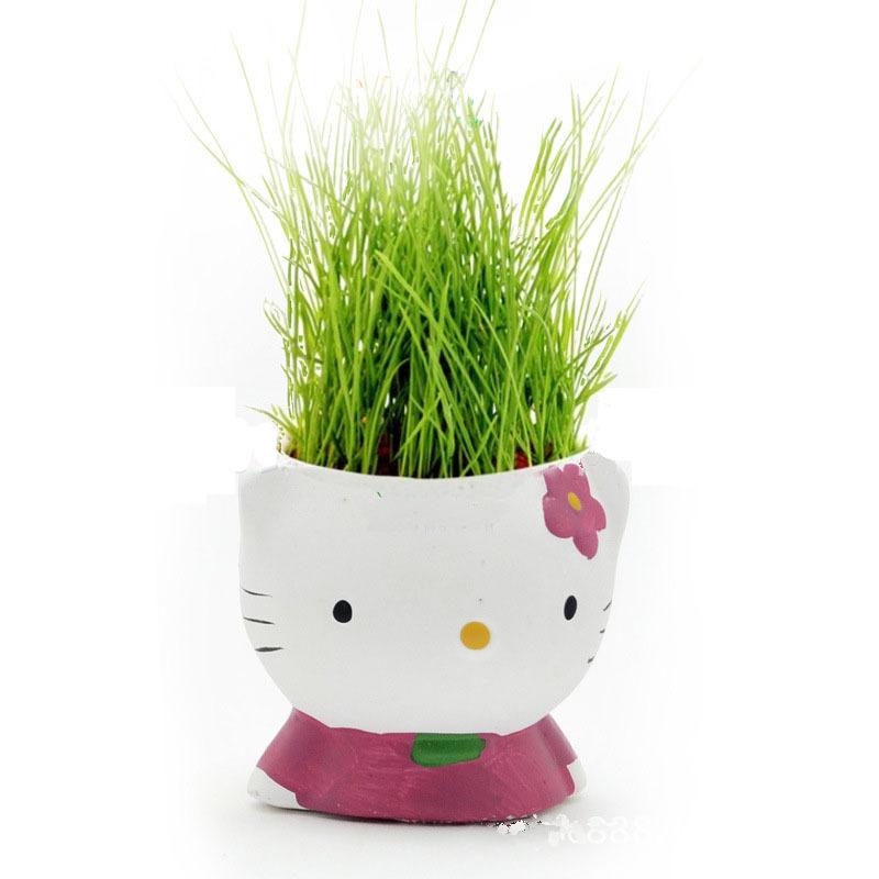herbe cheveux promotion achetez des herbe cheveux promotionnels sur alibaba group. Black Bedroom Furniture Sets. Home Design Ideas