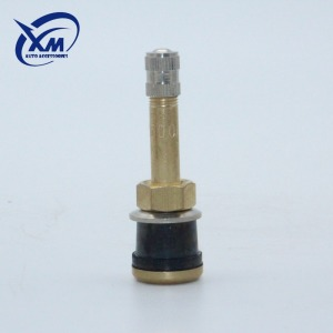 Excellent Material Good Reputation Snap In Tubeless Valve Tr500 Suppliers Tire Valve