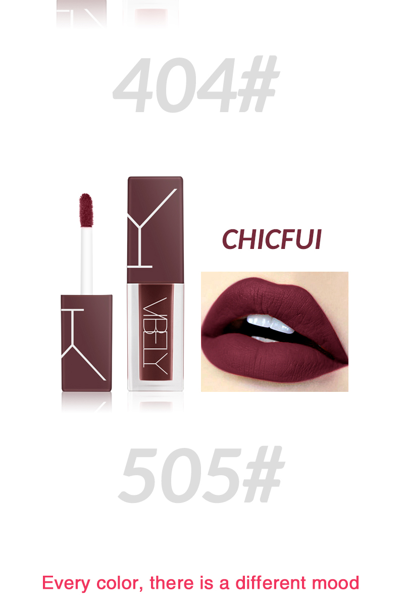 OEM  five colours matte liquid Waterproof and durable private label lip gloss
